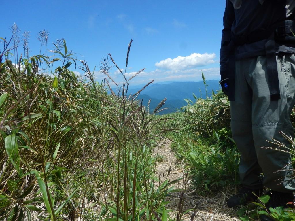 荒島岳下山0036