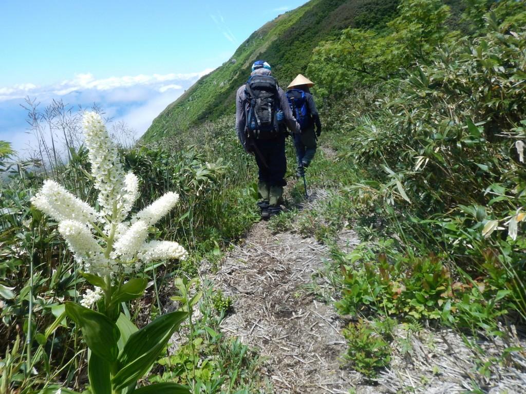 荒島岳下山0029